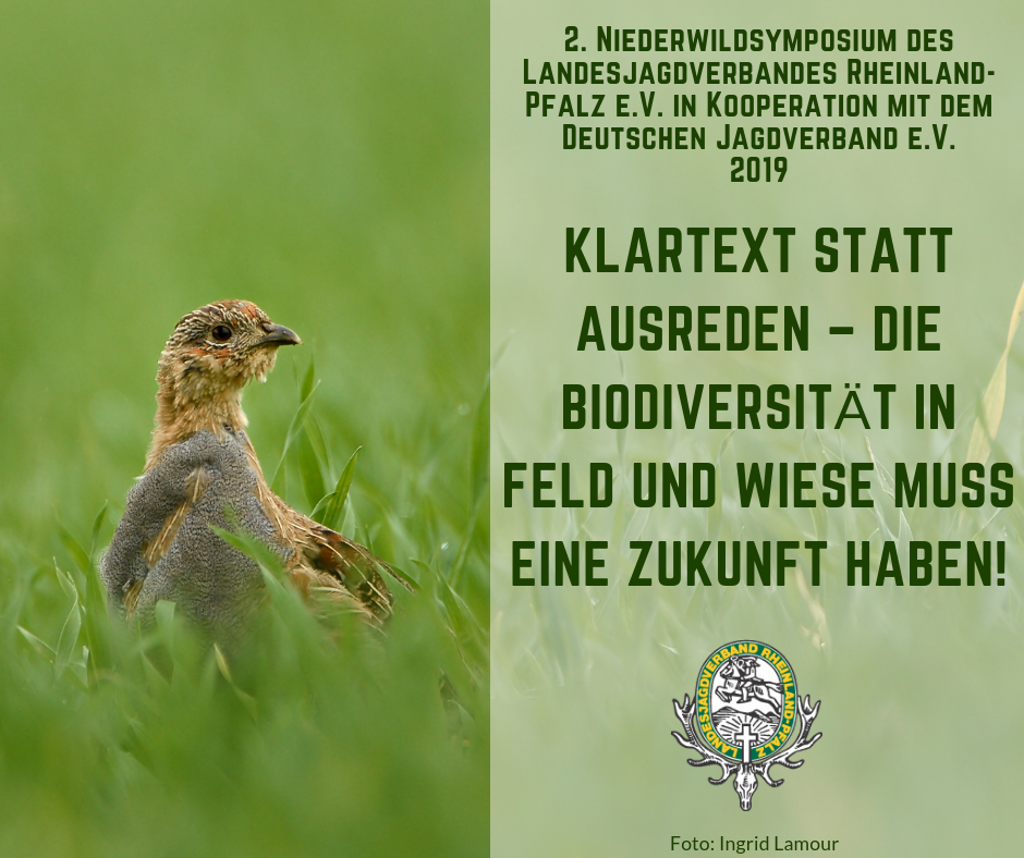 Niederwildsymposium 2019